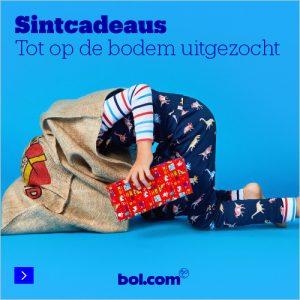 Sintcadeau bol.com